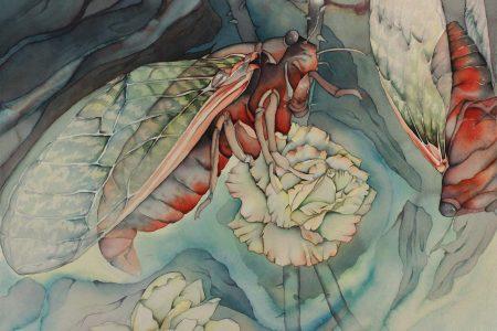 Emblazoned wings II
